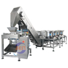 Hand Filling Semi-Automatic Packing Machine System with Buckets Elevator Conveyor by HDPE LDPE tube film